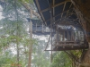 Gibbon experience classic 3 days tour, top tree house number 2