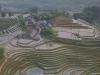Sa Pa rice field