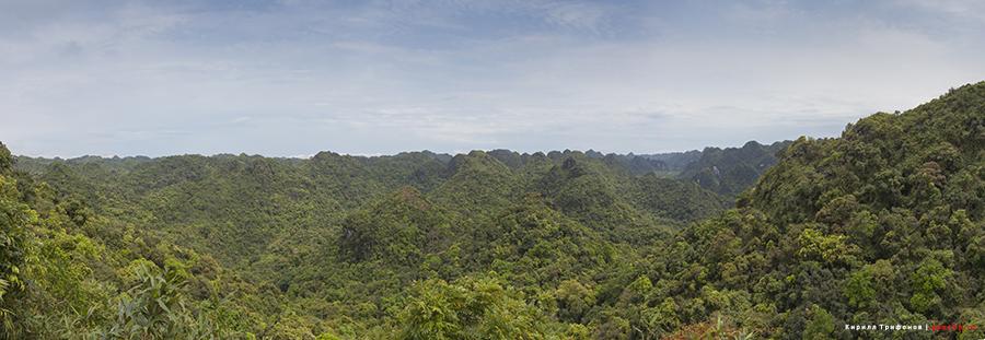 Национальный парк на острове Кат Ба