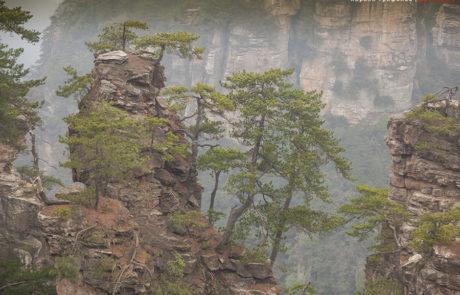Парк Улинъюань