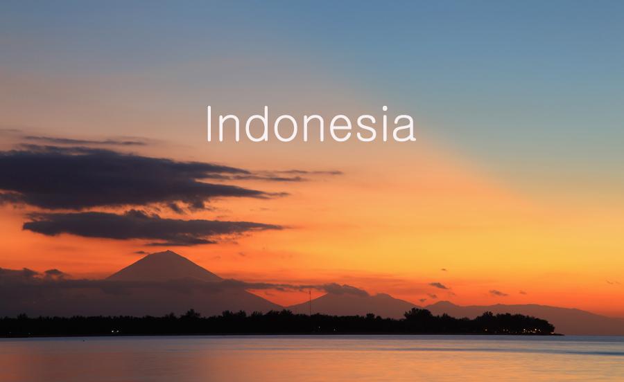 Видео - путешествие по Индонезии