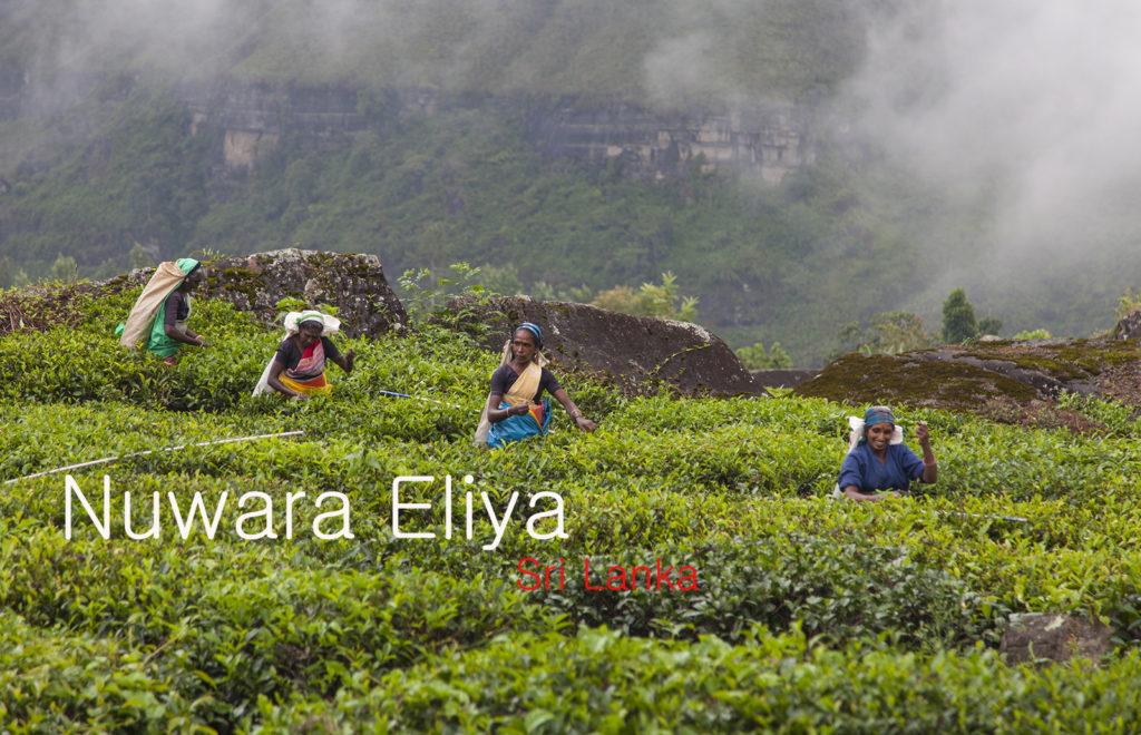 Видео экскурсия по Нувара-Элия