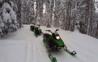 Снегоходы Ирбис