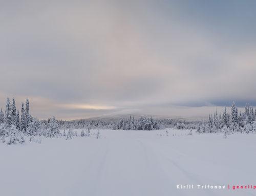 Путешествие на снегоходах по парку Паанаярви