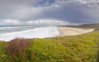 Пляж Pedras Negras