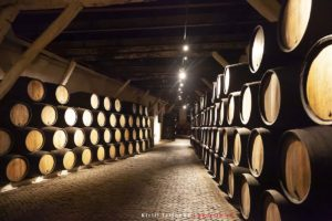 Винодельня Сандеман в Порто