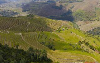 Долина реки Дуэро, смотровая Valle de Mendiz