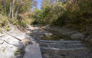 Начало тропы по руслу реки Куаго