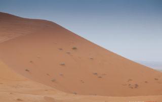 Рассвет на дюнах Эрг-Шебби
