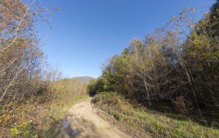 Дорога к водопаду Хрустальный, приток реки Пшада