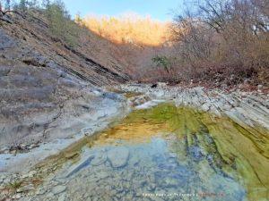 Тропа к Плесецким водопадам по руслу реки Тхаб